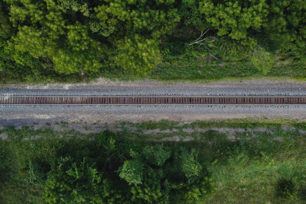 Railroad-in-the-Trees